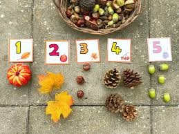 Wisbech Nursery October 2018 | Natural things that the Autumn Season brings!