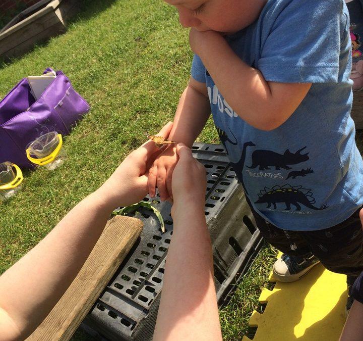 Peterborough Nursery June 2019