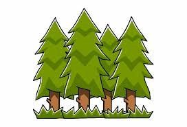 Forest School Spring 2020